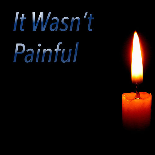 It Wasn't Painful by Various Artists