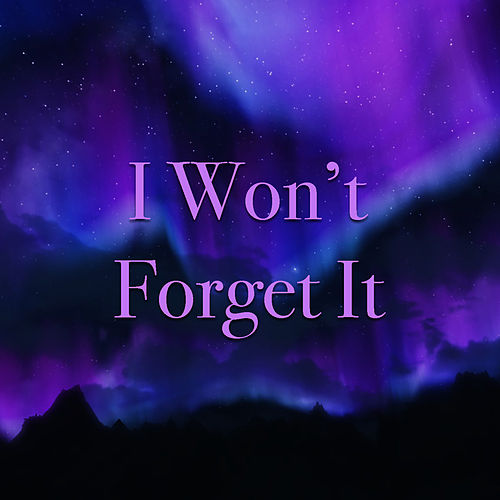 I Won't Forget It by Various Artists