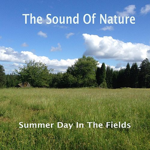 Summer Day in the Fields di The Sound of Nature