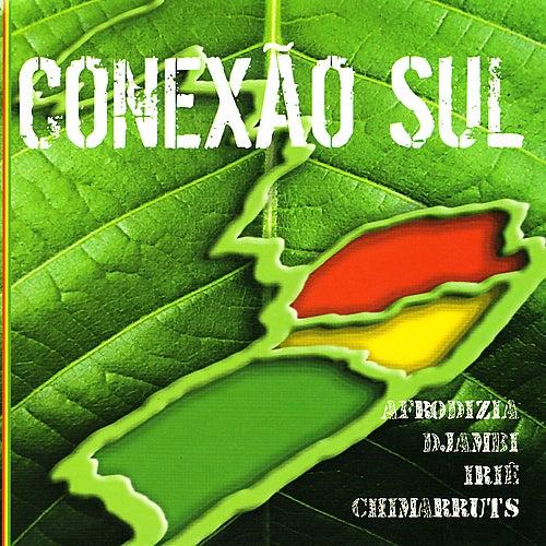 Conexão Sul de Various Artists