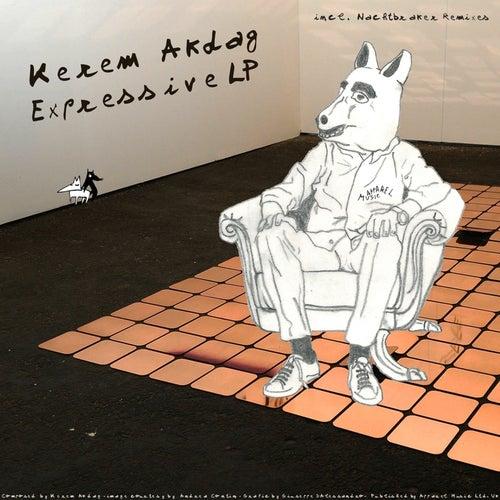 Expressive LP by Kerem Akdag