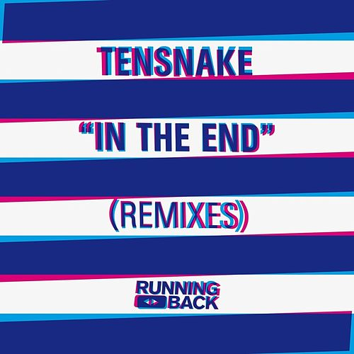 In The End (Remixes) de Tensnake