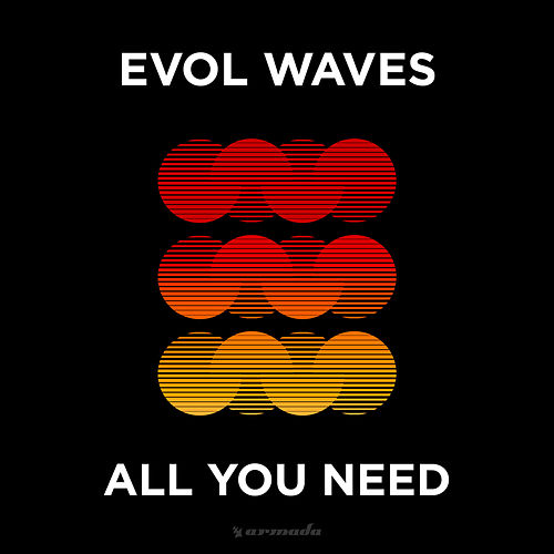 All You Need by Evol Waves