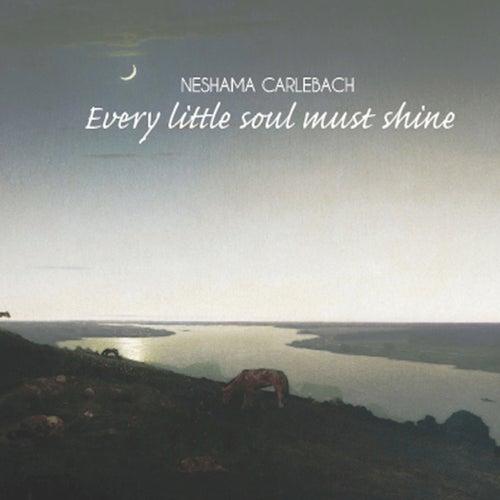 Every Little Soul Must Shine by Neshama Carlebach
