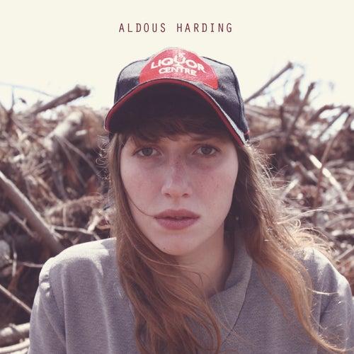 Hunter by Aldous Harding