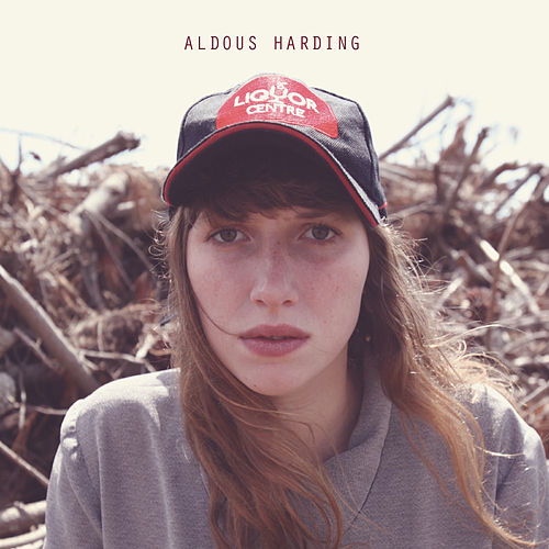 Small Bones of Courage by Aldous Harding