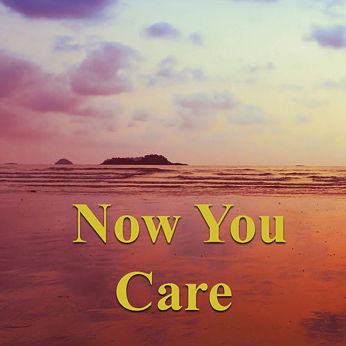 Now You Care von Various Artists