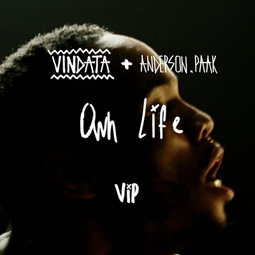 Own Life (feat. Anderson .Paak ) (VIP Mix) von Vindata