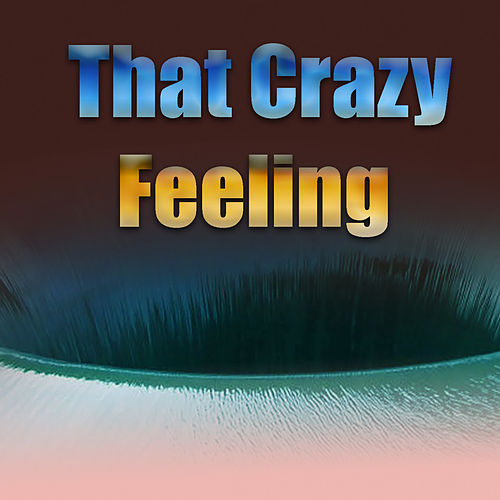 That Crazy Feeling by Various Artists