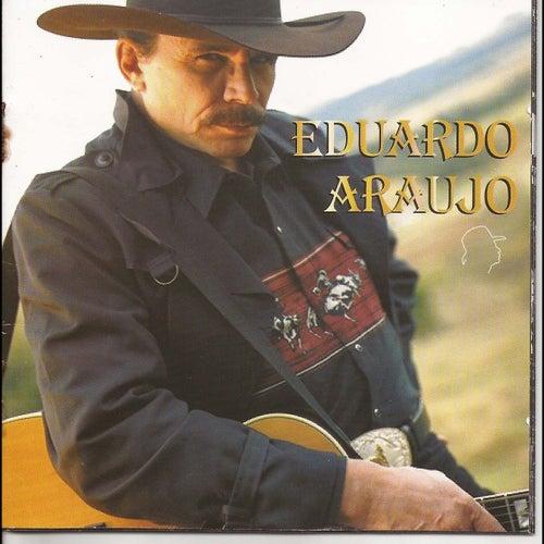 A Aventura Não Termina de Eduardo Araujo