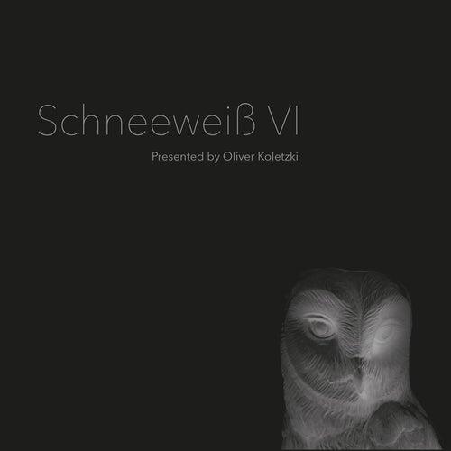 Schneeweiss VI: Presented by Oliver Koletzki de Various Artists