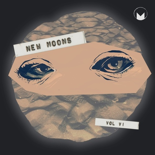 New Moons Vol. VI by Various Artists