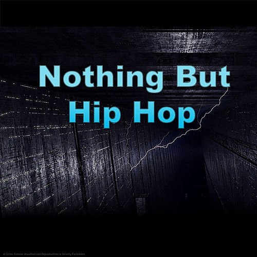 Nothing But Hip Hop de Various Artists