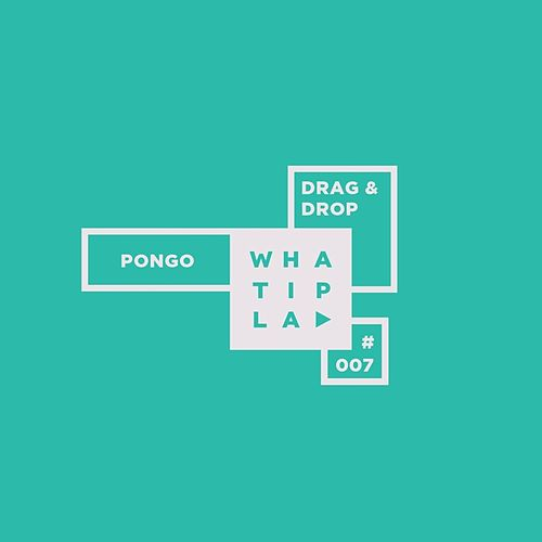 Pongo by Drag