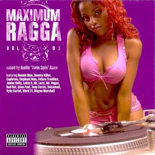 Maximum Ragga, Vol. 3 de Various Artists