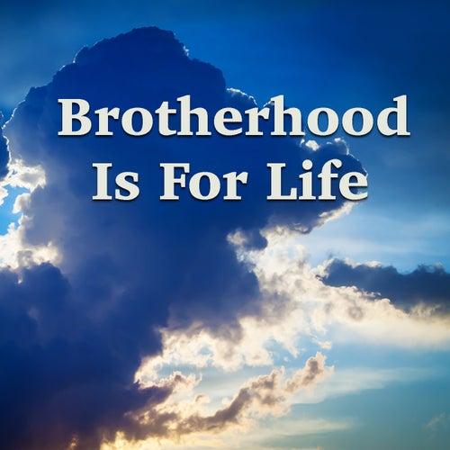 Brotherhood Is For Life de Various Artists