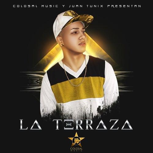 La Terraza de Various Artists