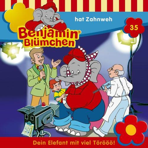 Folge 35: hat Zahnweh von Benjamin Blümchen