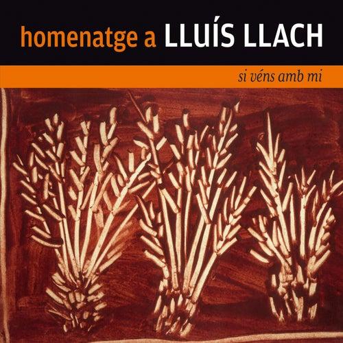Homenatge a Lluís Llach. Si Véns amb Mi de Various Artists