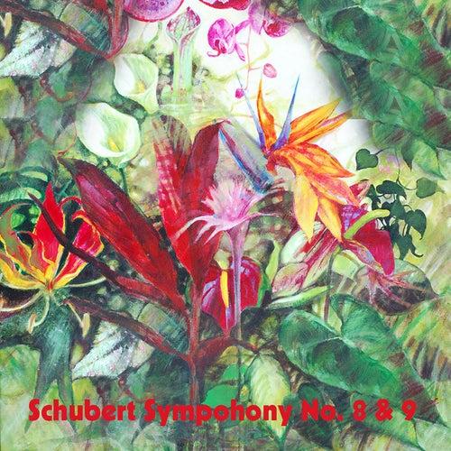 Schubert Sympohony No. 8 & 9 von Boston Symphony Orchestra