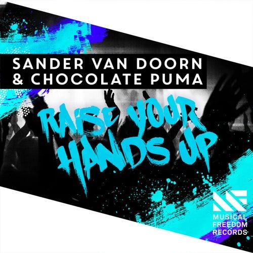 Raise Your Hands Up von Sander Van Doorn