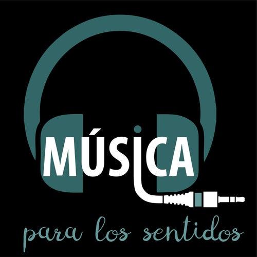 Música para los Sentidos de Música para los Sentidos