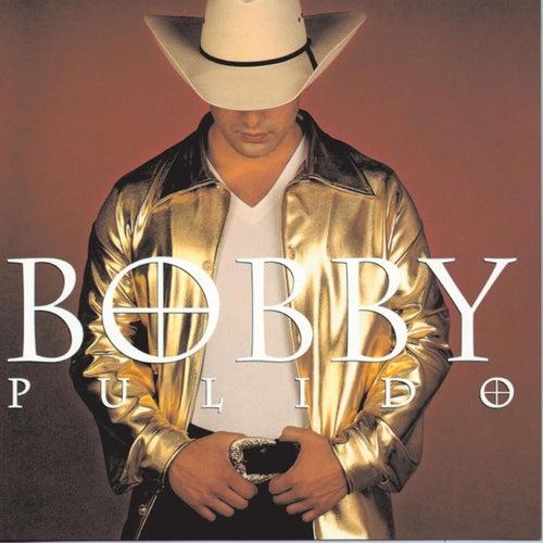 Llegaste A Mi Vida de Bobby Pulido