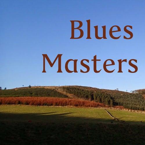 Blues Masters de Various Artists