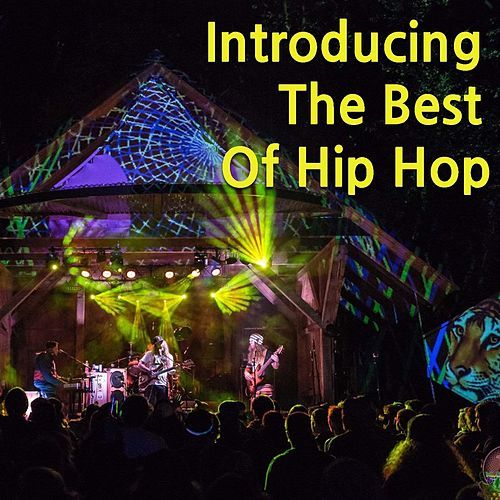 Introducing The Best Of Hip Hop by Various Artists