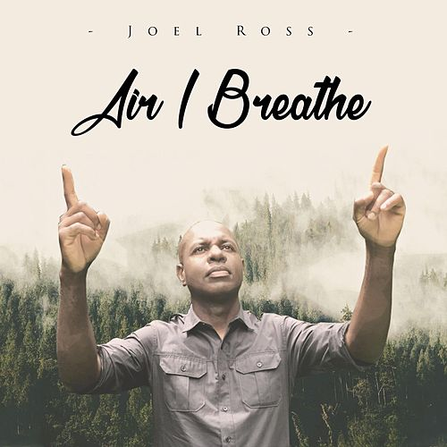 Air I Breathe de Joel Ross
