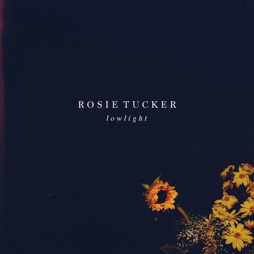 Lowlight by Rosie Tucker