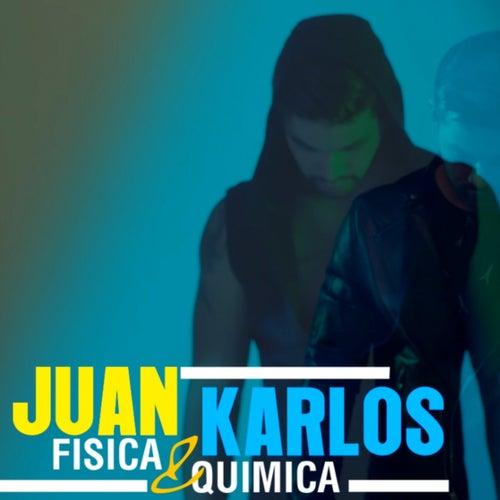 Fisica y Quimica von Juan Karlos