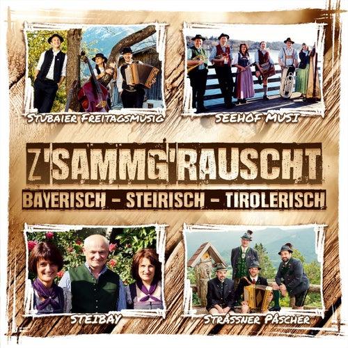 Z'sammg'rauscht / Bayerisch - Steirisch - Tirolerisch von Various Artists