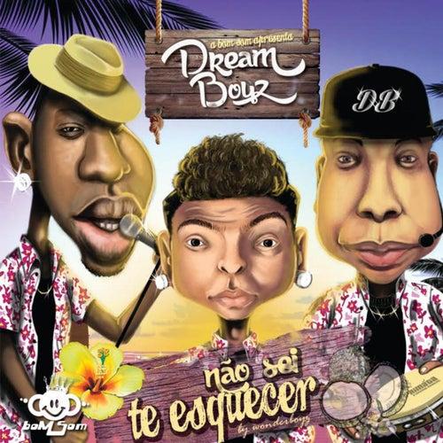 Não Sei Te Esquecer by Dream Boyz