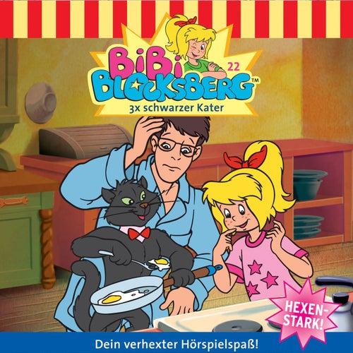 Folge 22: 3x schwarzer Kater von Bibi Blocksberg