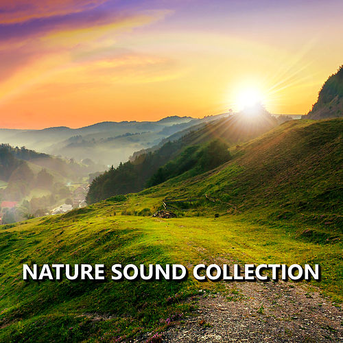 Nature Sound Collection de Nature Sound Collection