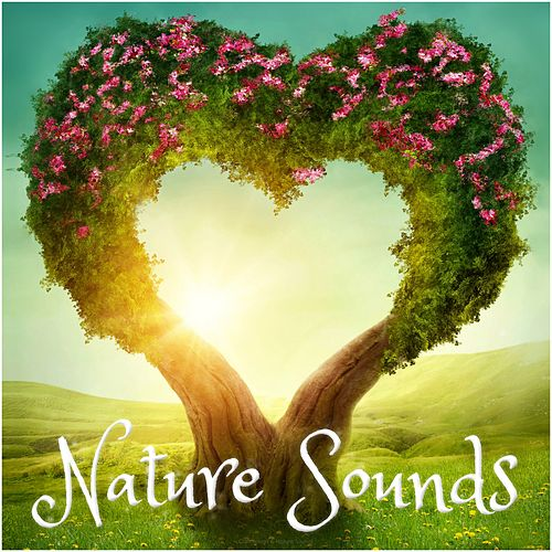 Love Nature Sounds fra Various Artists