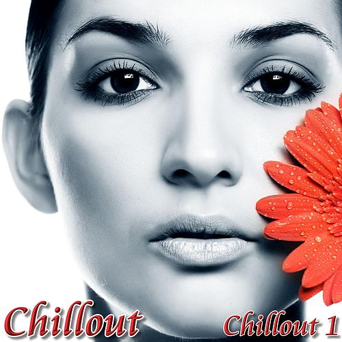 Chillout 1 by Chill Out