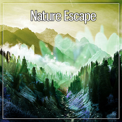 Nature Escape – Pure Relaxation, Lounge, Natural Ambience, Well Being de Japanese Relaxation and Meditation (1)