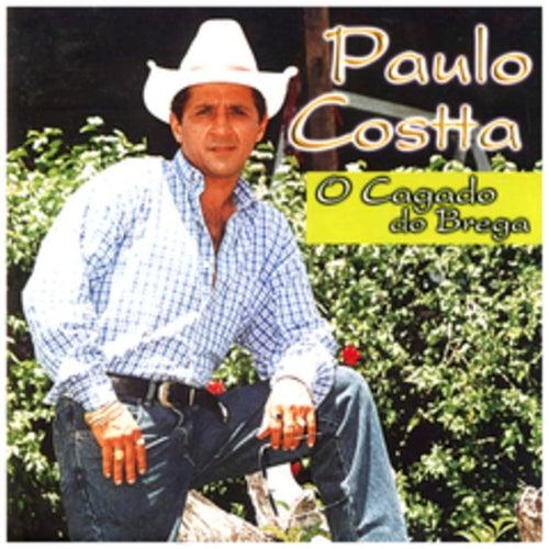 O Cagado do Brega von Paulo Costta