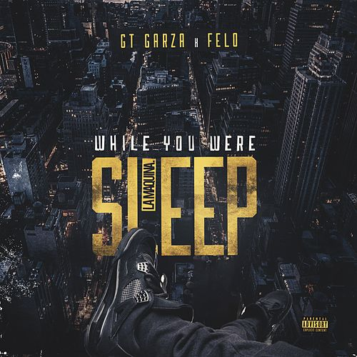 While You Were Sleep de Felo