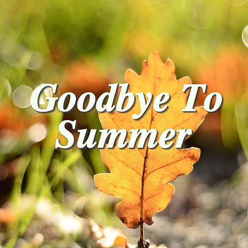 Goodbye To Summer de Various Artists