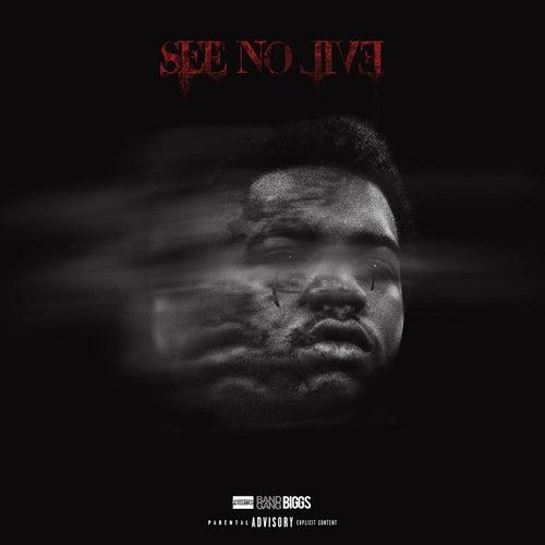 See No Evil by BandGang Biggs