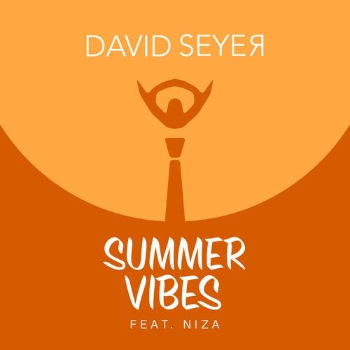 Summer Vibes (feat. Niza) by David Seyer