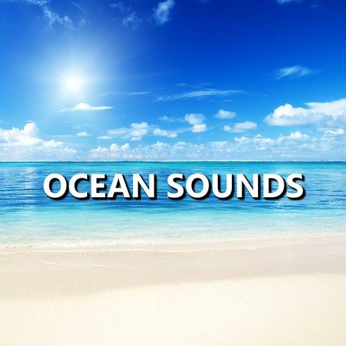 Ocean Sounds by Calm Ocean Sounds (1) : Napster