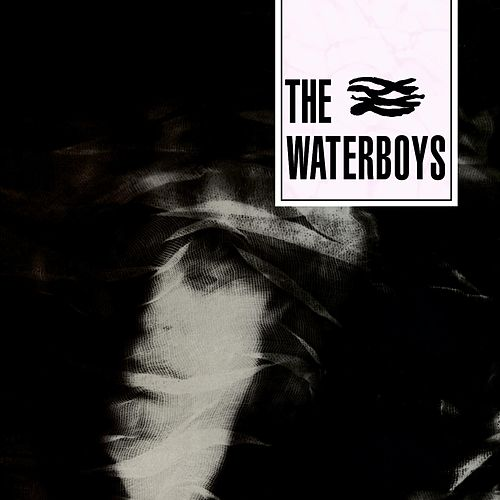 The Waterboys de The Waterboys