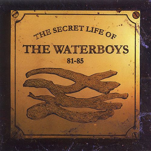 The Secret Life of The Waterboys (1981-1985) de The Waterboys