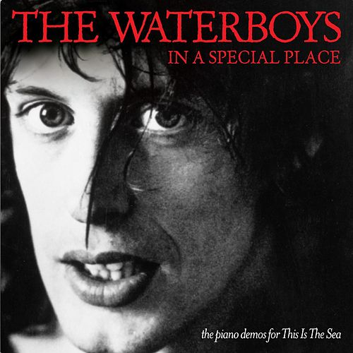 In a Special Place: The Piano Demos for This Is the Sea de The Waterboys
