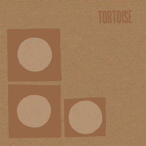 Tortoise by Tortoise
