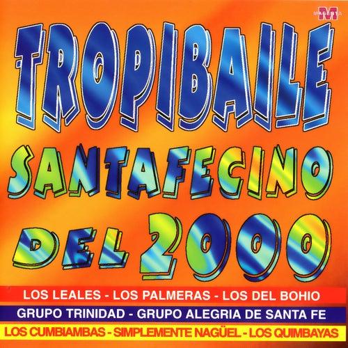 Tropibaile Santafecino de Various Artists